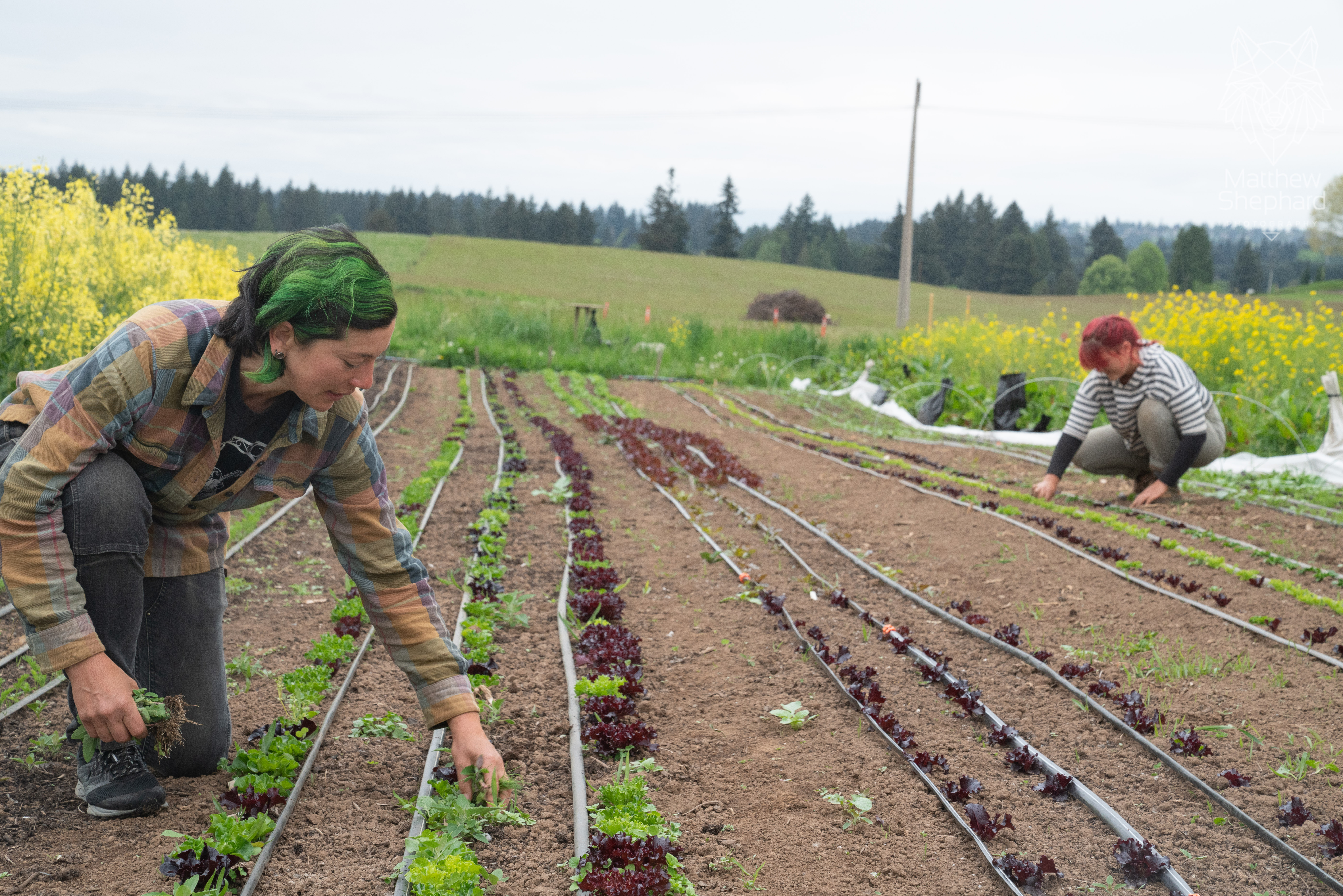 Farm Happenings for May 14, 2021