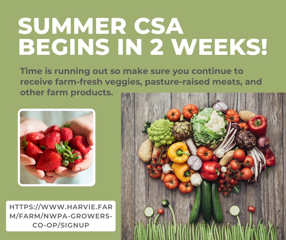 Spring CSA Week 5 May 26