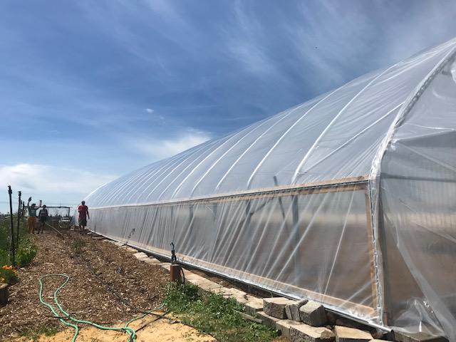 Farm Happenings for June 4th