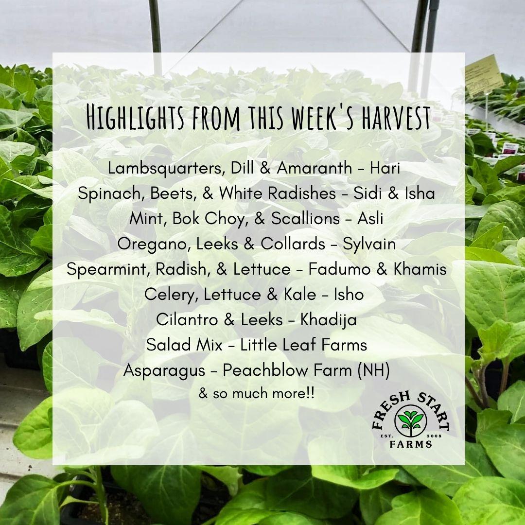 Farm Happenings for June 9 & 10