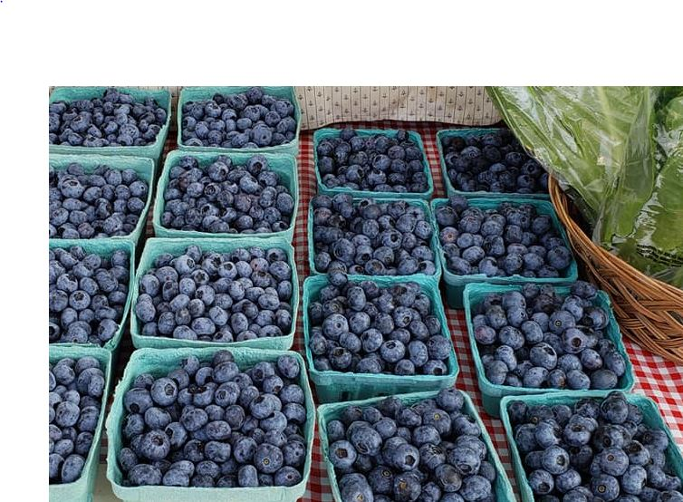 Blueberries and Lettuce