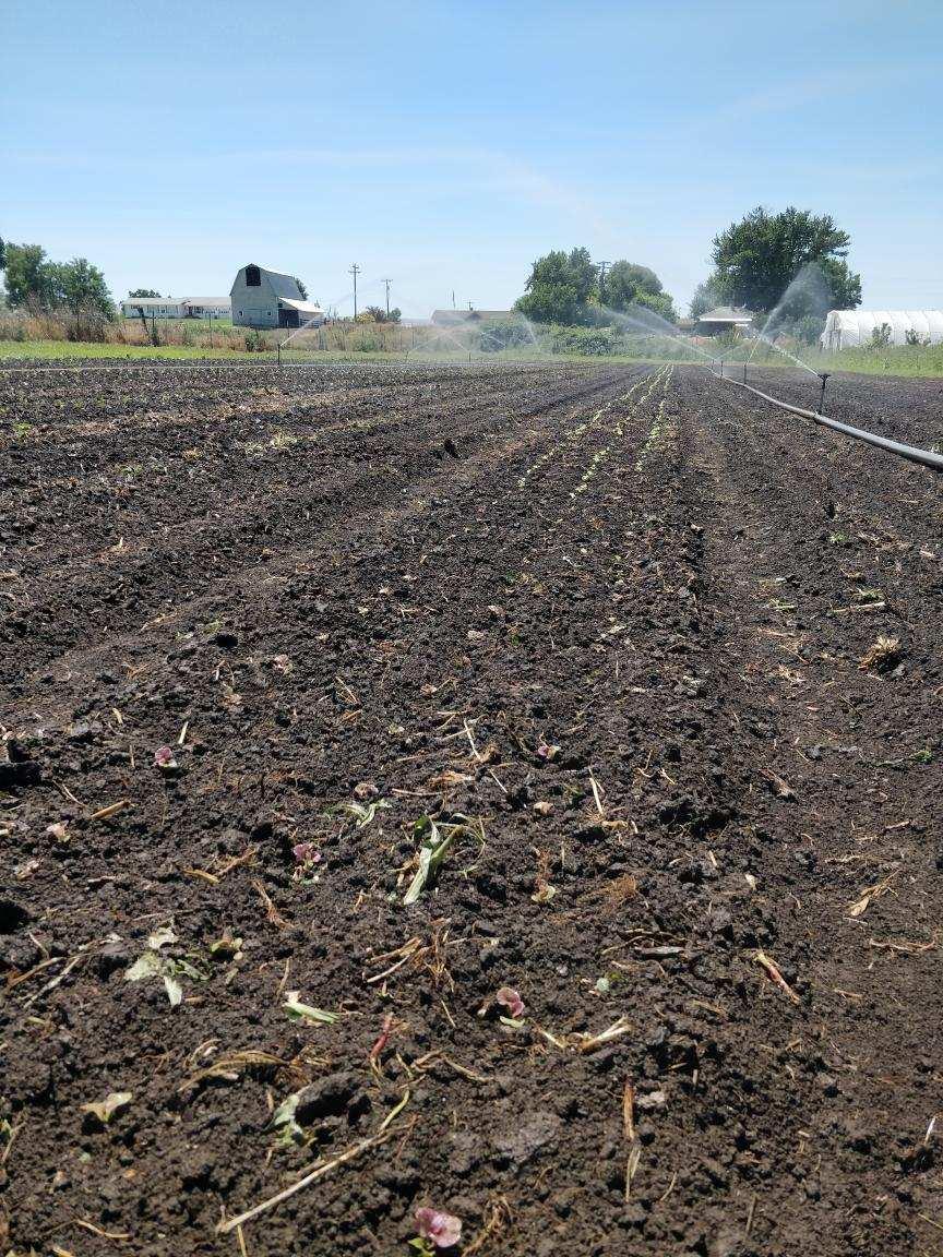 Farm Happenings for July 13, 2021