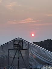 Farm Happenings for July 14, 2021
