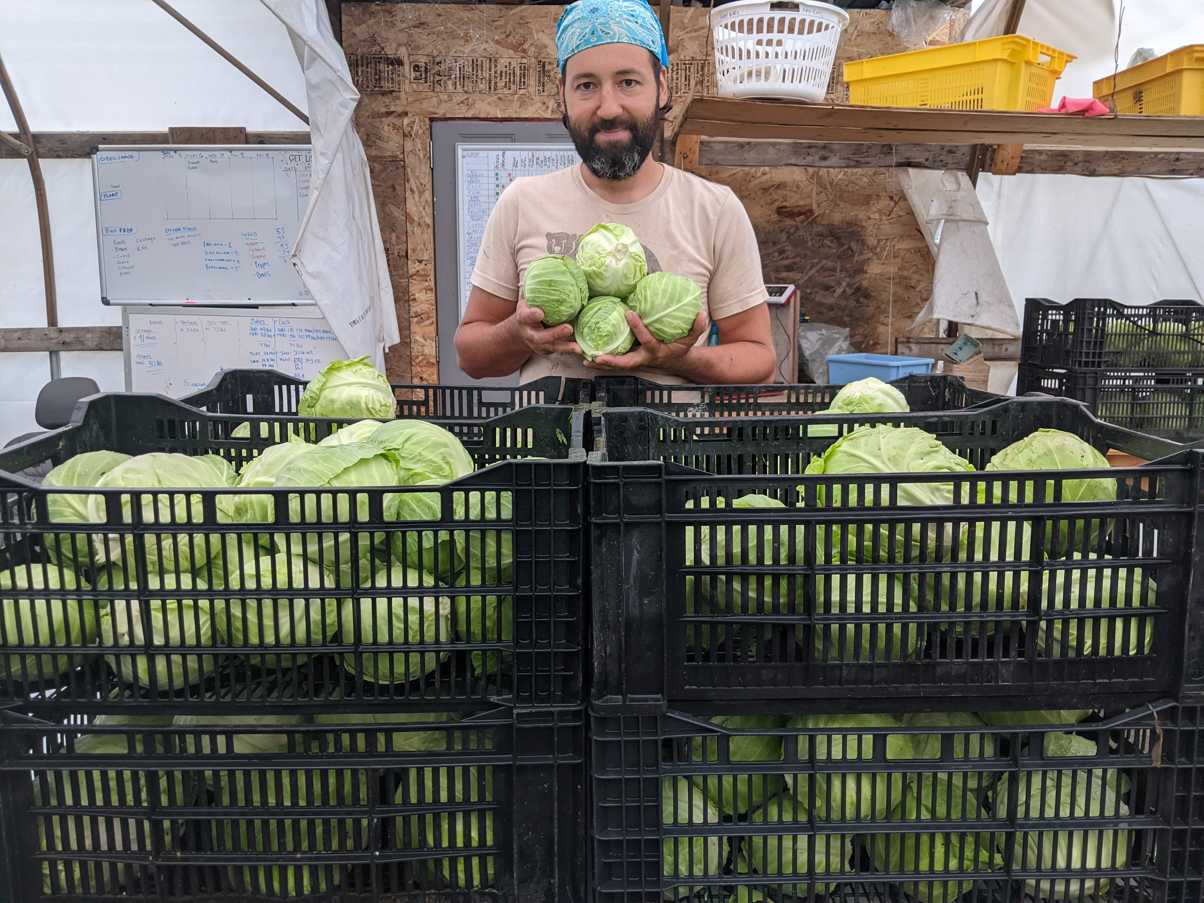 Online Farm Stand July 13