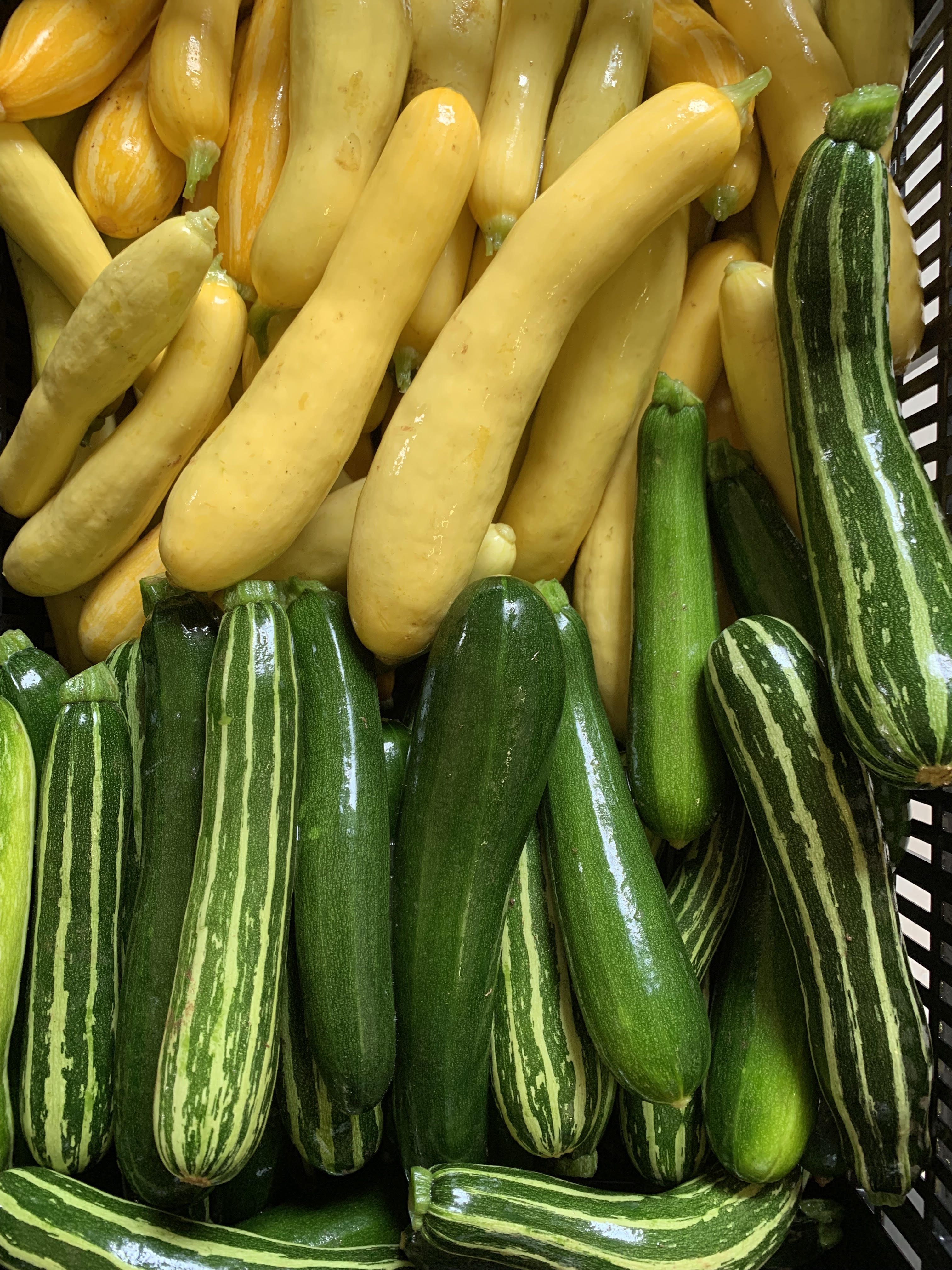 Ideas for all of that Summer Squash...