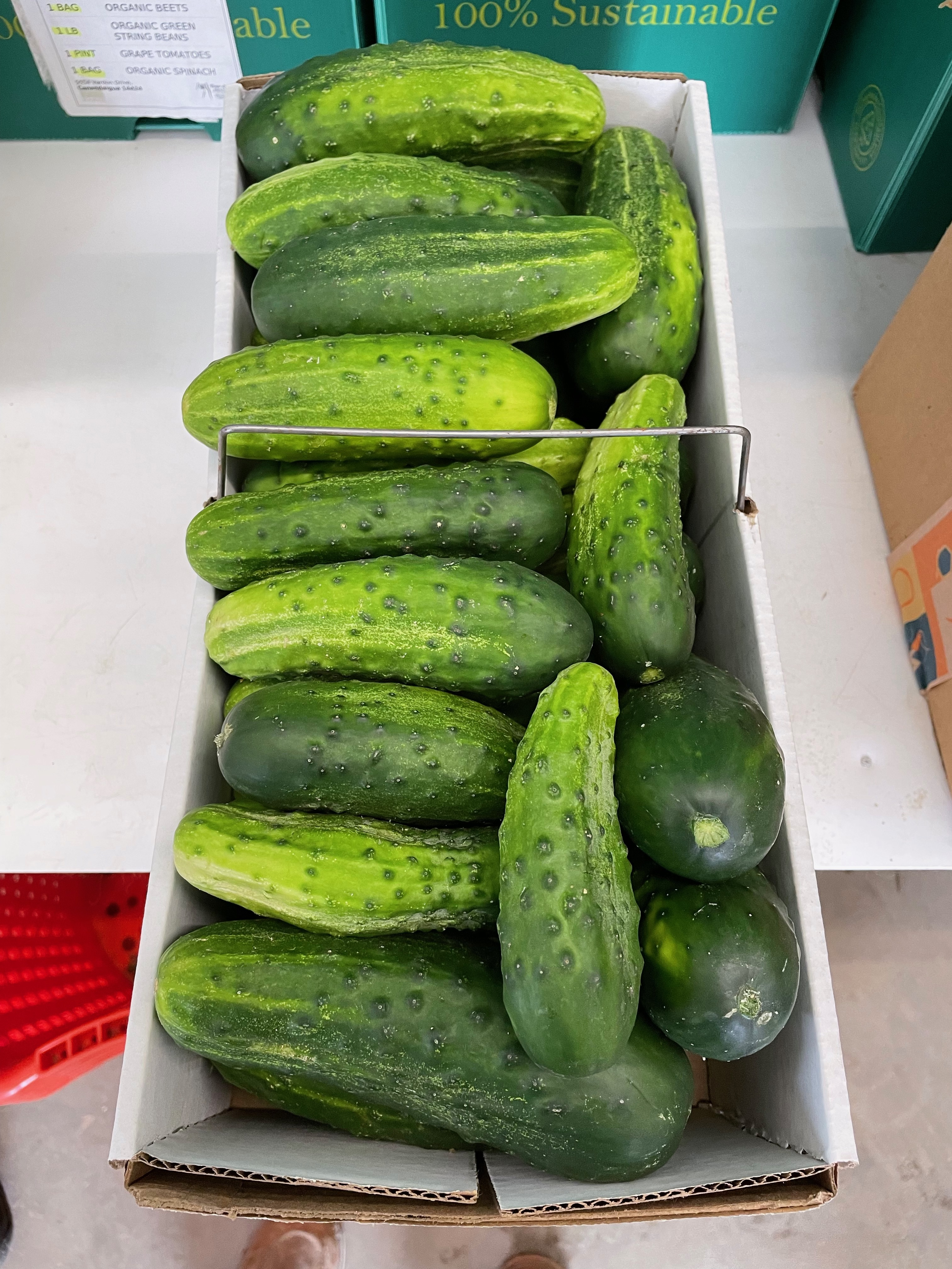 Bulk Item Ordering for Canning or Freezing and Okra!!