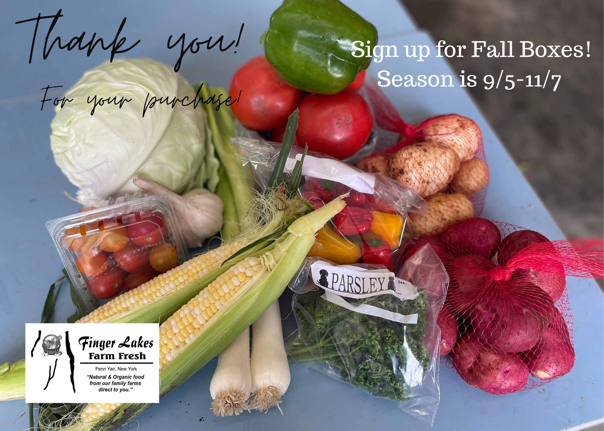 Fall is in the air!  Are you signed up to keep getting Veggies!?