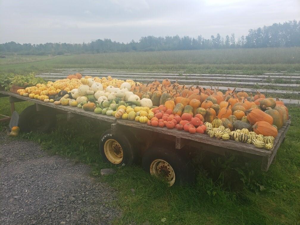Farm Happenings for September 16, 2021