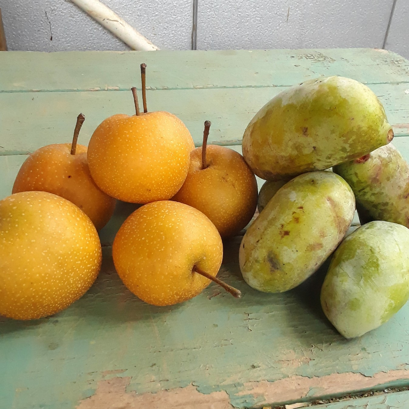 We have Pawpaws and Asian Pears!