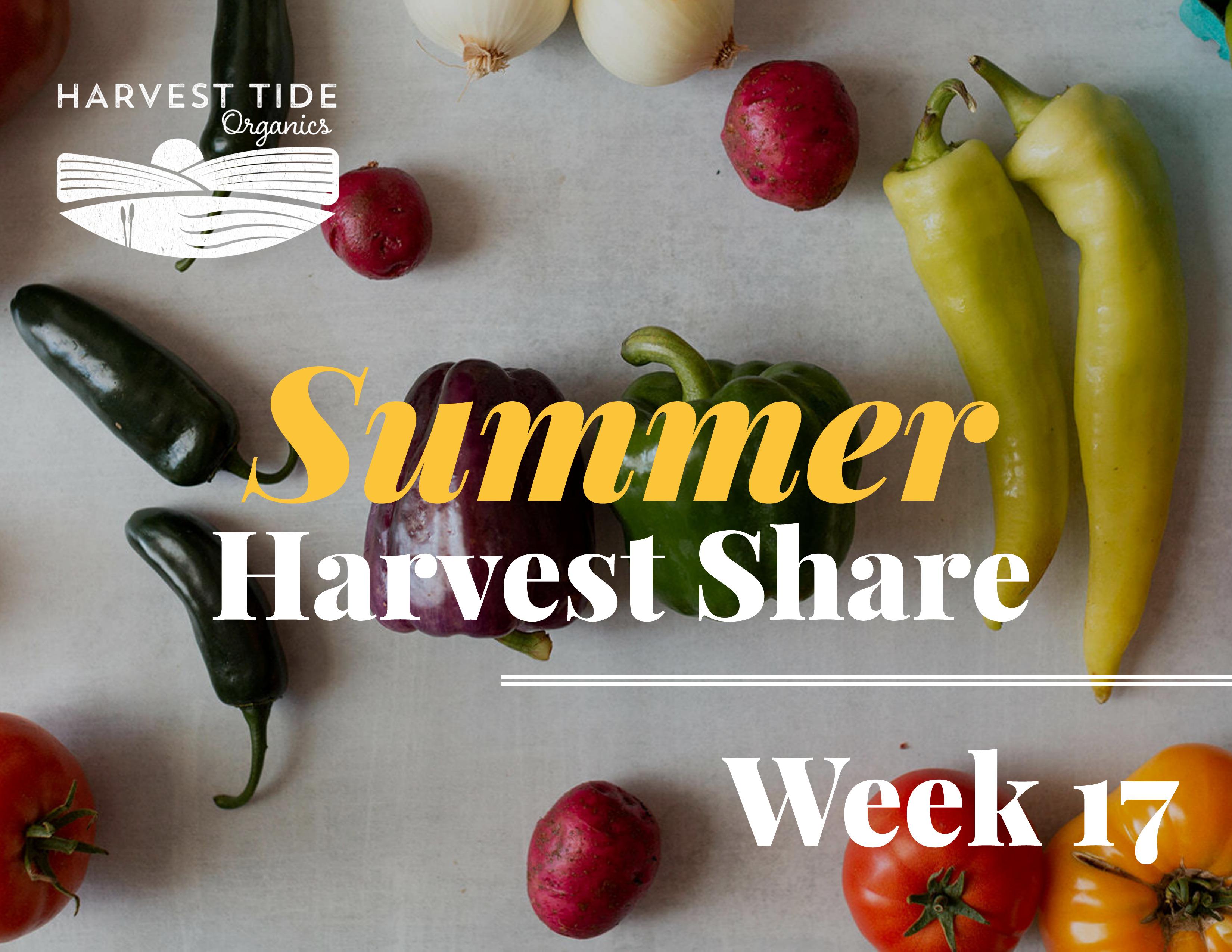 **Last** Summer Harvest Share! Week 17