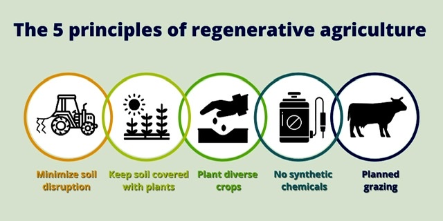 Thoughts on Regenerative Agriculture