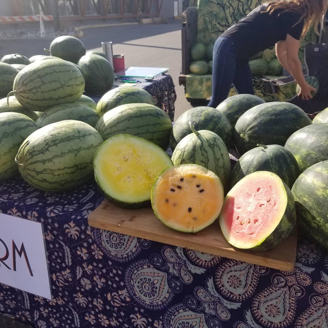 Storage Crops and Watermelon Season in the Cariboo!