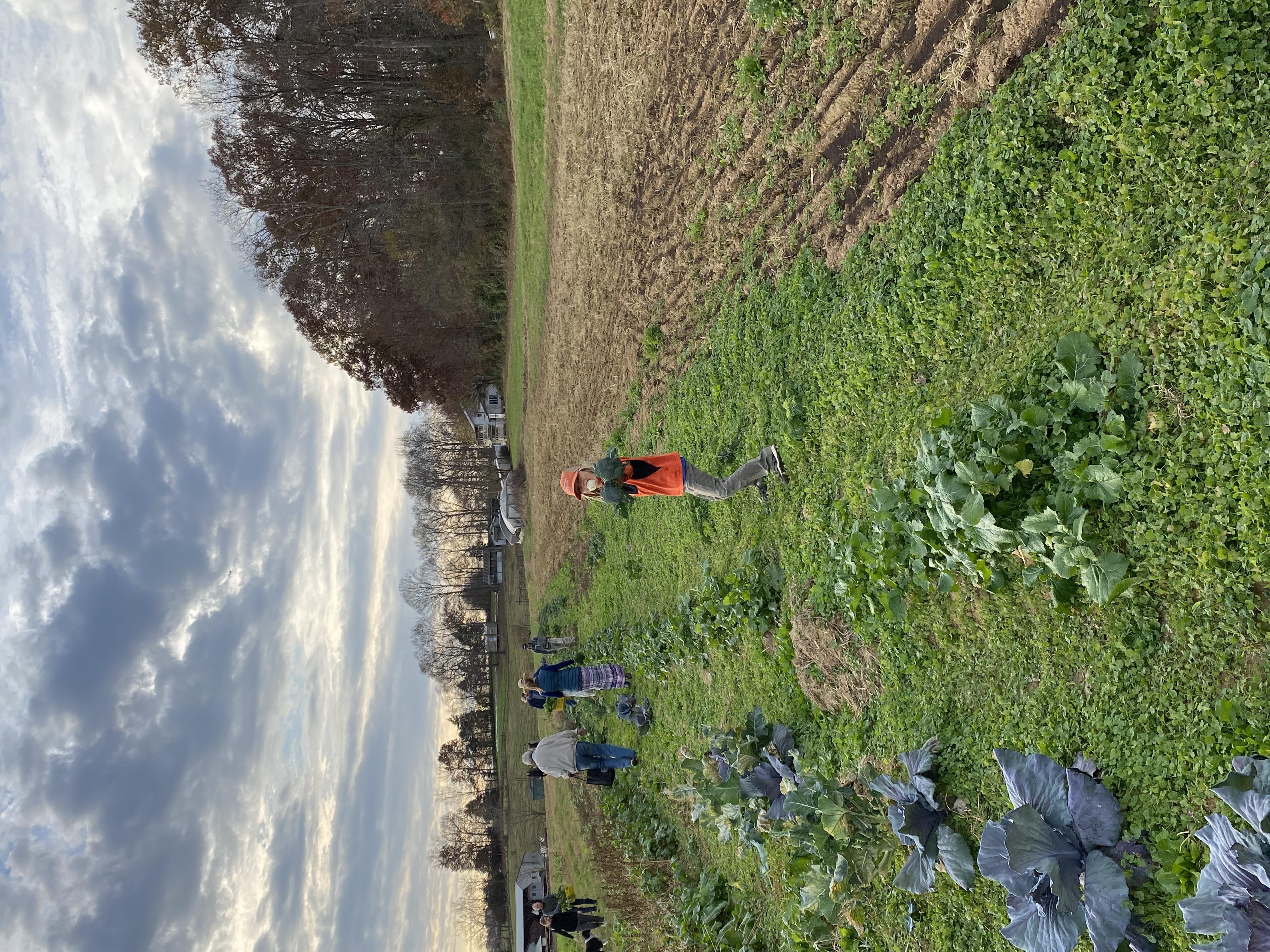 Farm Happenings for October 5, 2021