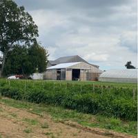 Farm Happenings for Week of October 11, 2021