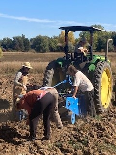 Farm Happenings Week 20 CSA, 2021