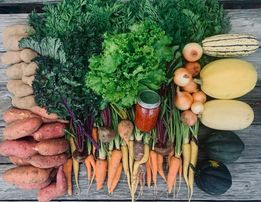 Welcome to Oxen Hill Farm CSA Week 17 Summer 2021! ( October 11, 2021)