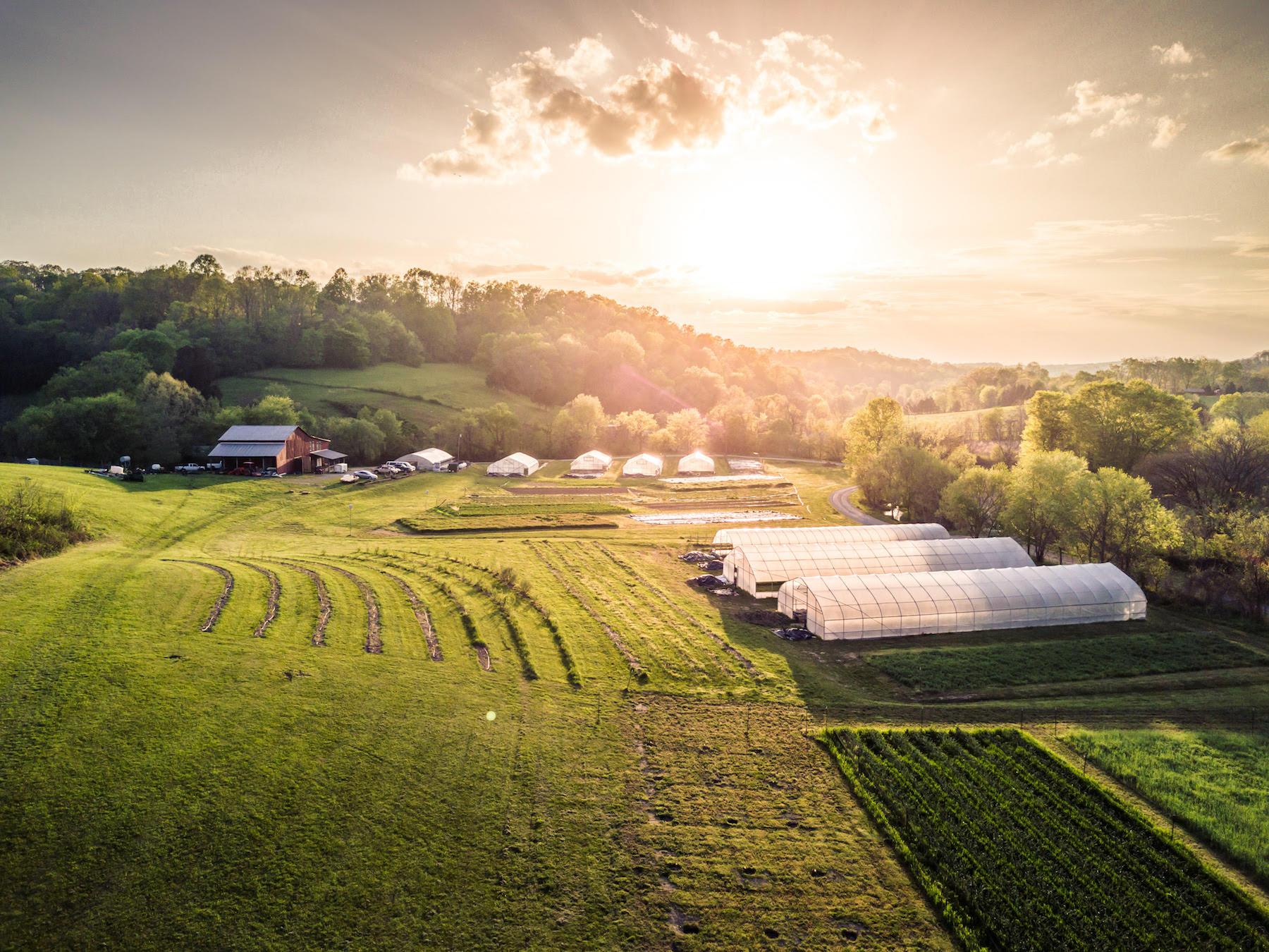 Personalized Harvie Farm Shares - Harvie