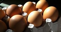 Egg Share (half-dozen)