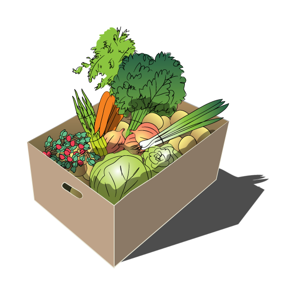 Organic Vegetable Share