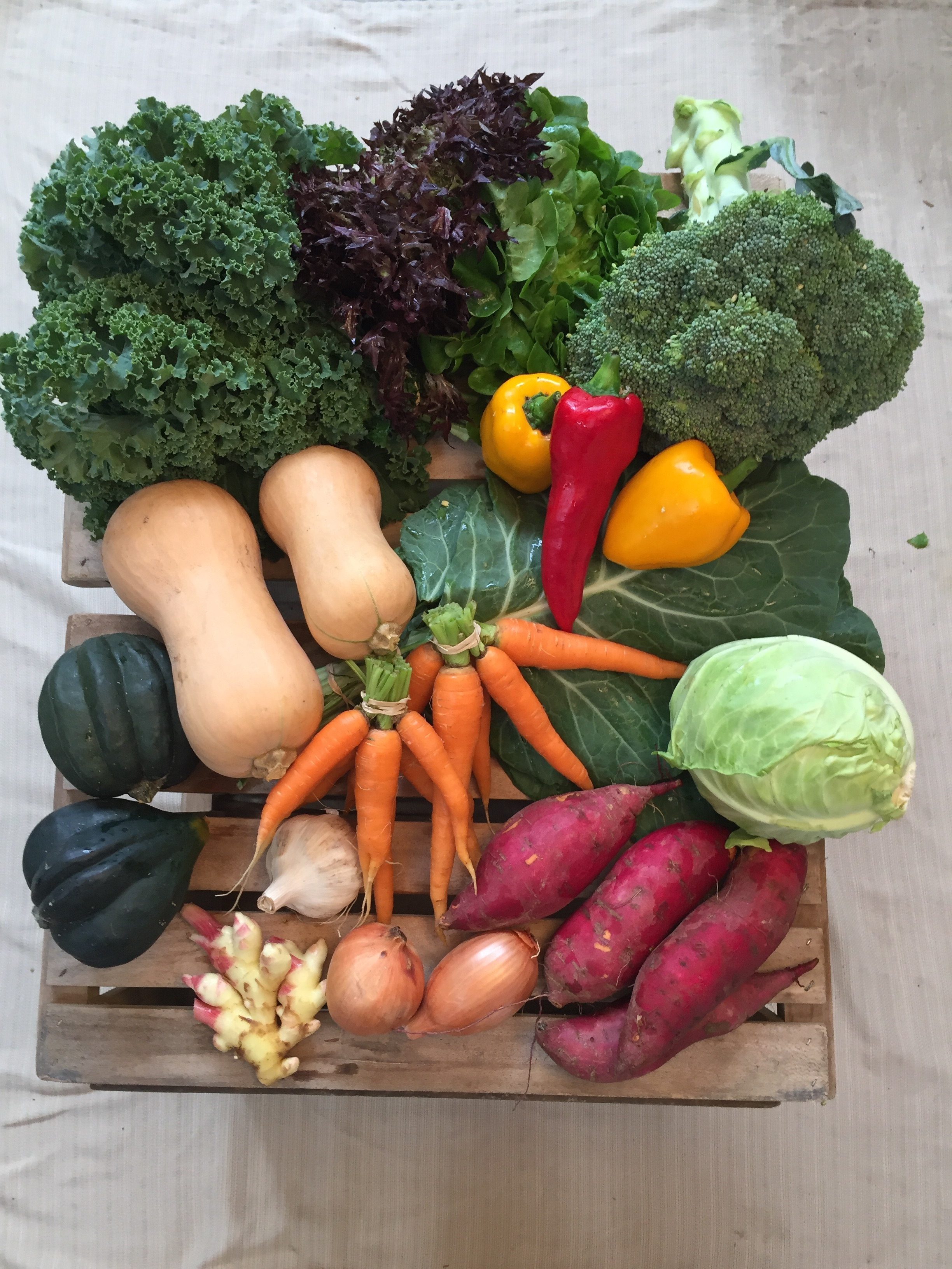 Vegetable Share - Abundant