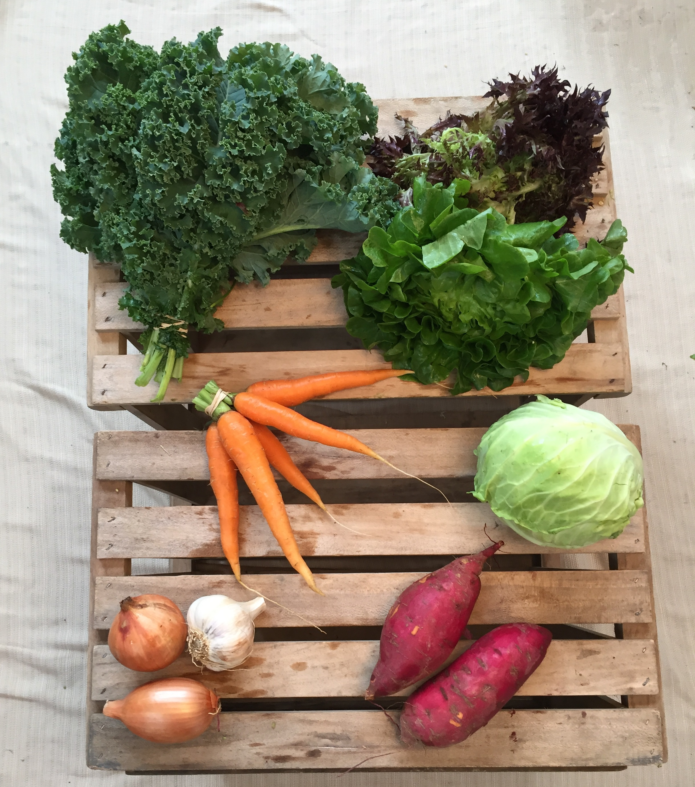 Vegetable Share - Small