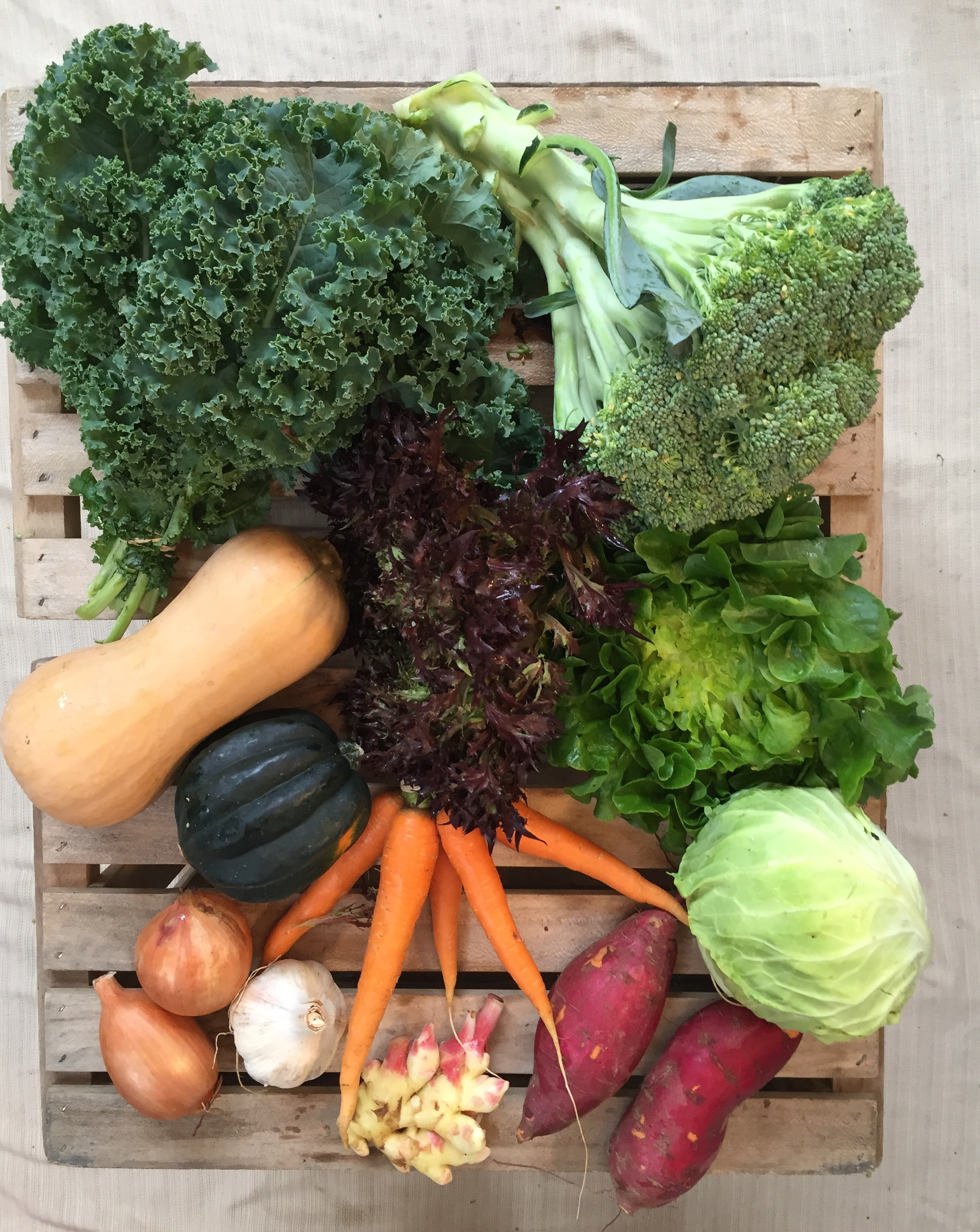 Vegetable Share - Regular