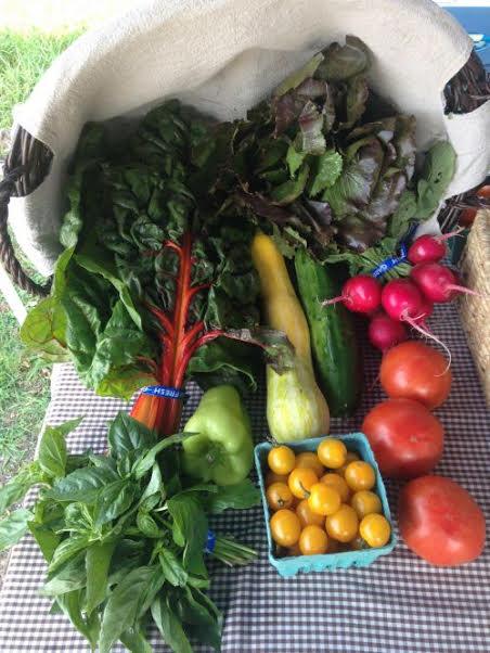 2018 Summer Vegetable Share - Large