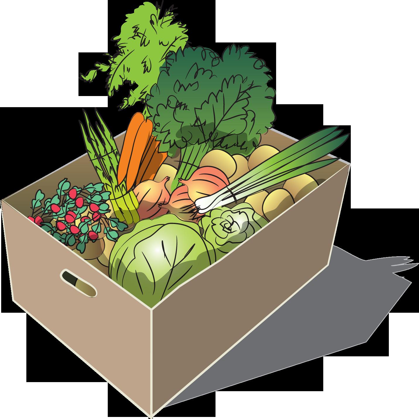Regular Spring Vegetable Share