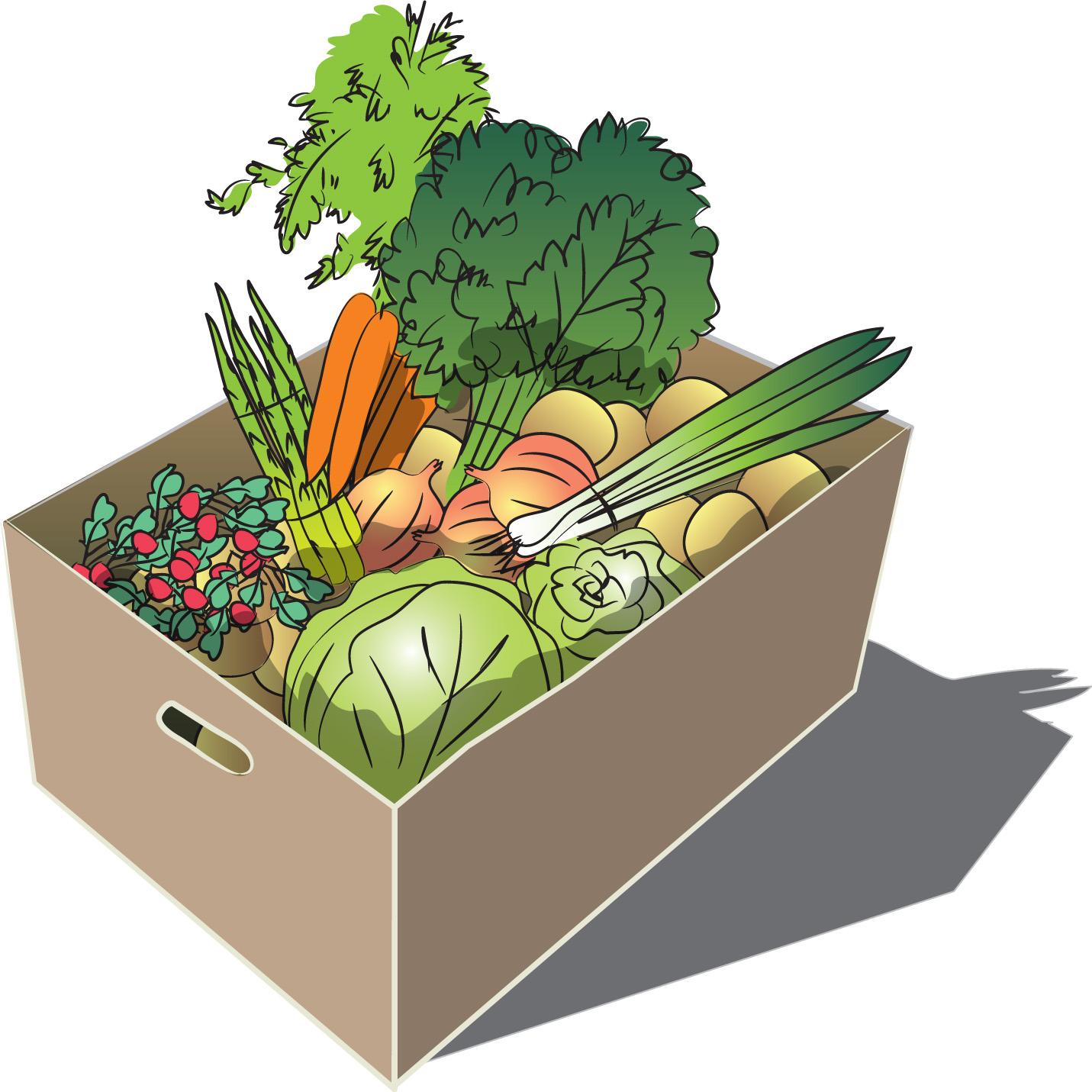 Large Spring vegetable share
