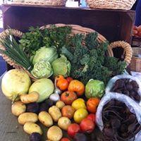 Family Summer Vegetable Share