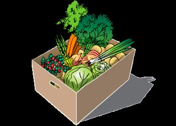 Growers Only Full Vegetable Share - 2018