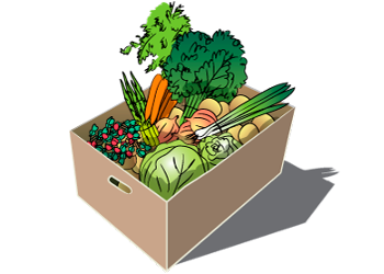 Grower Plus Single Vegetable and Fruit Share - 2018