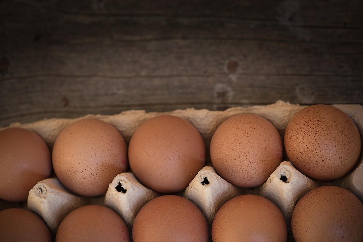 Egg Share - 2018