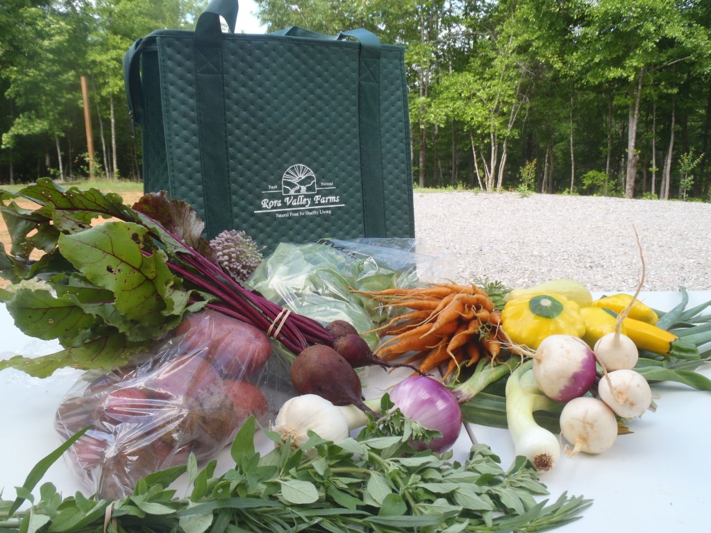 Regular Farmship Share (Free-Home Delivery in B'ham)