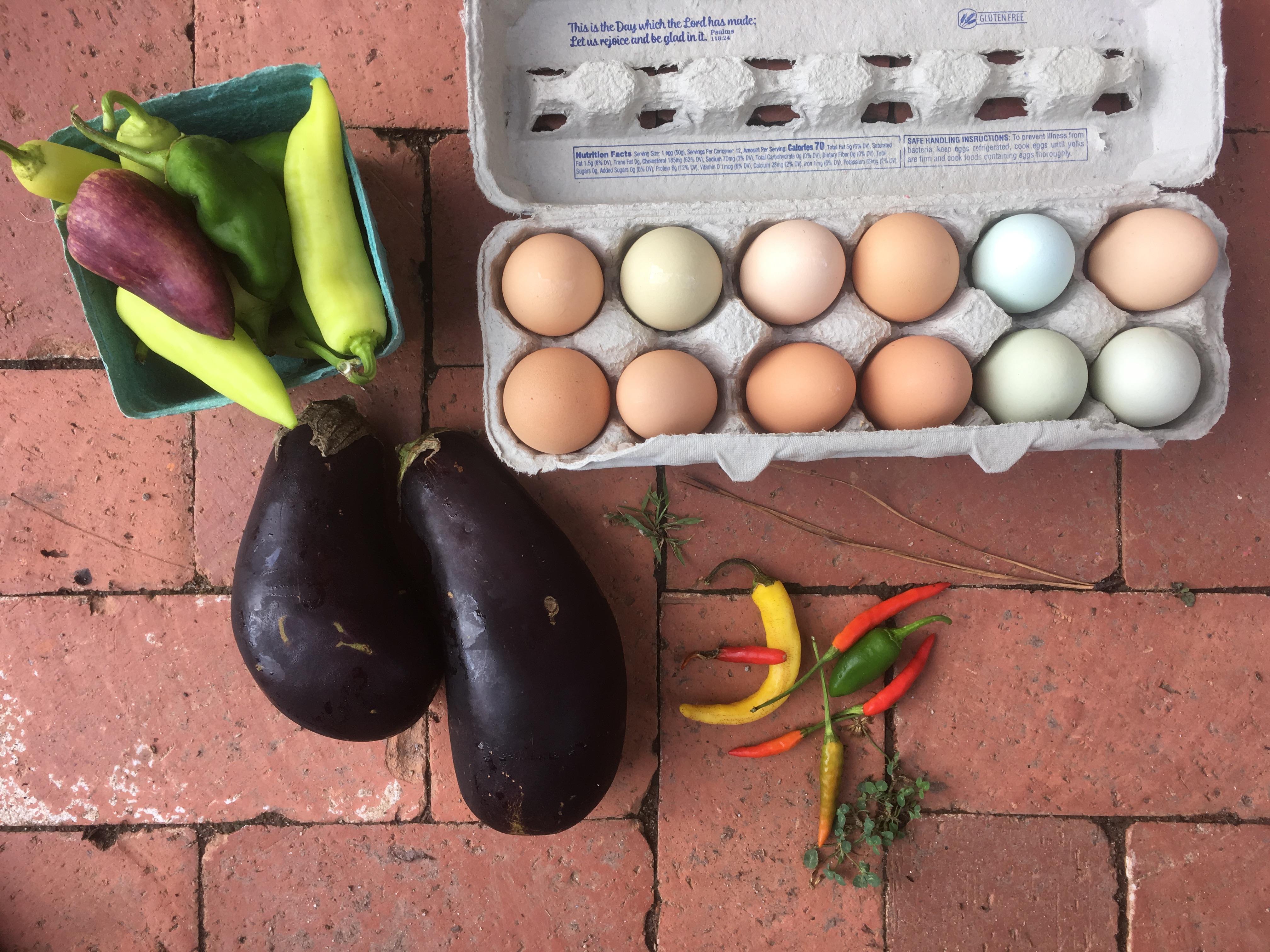 Vegetable Share - Omelette