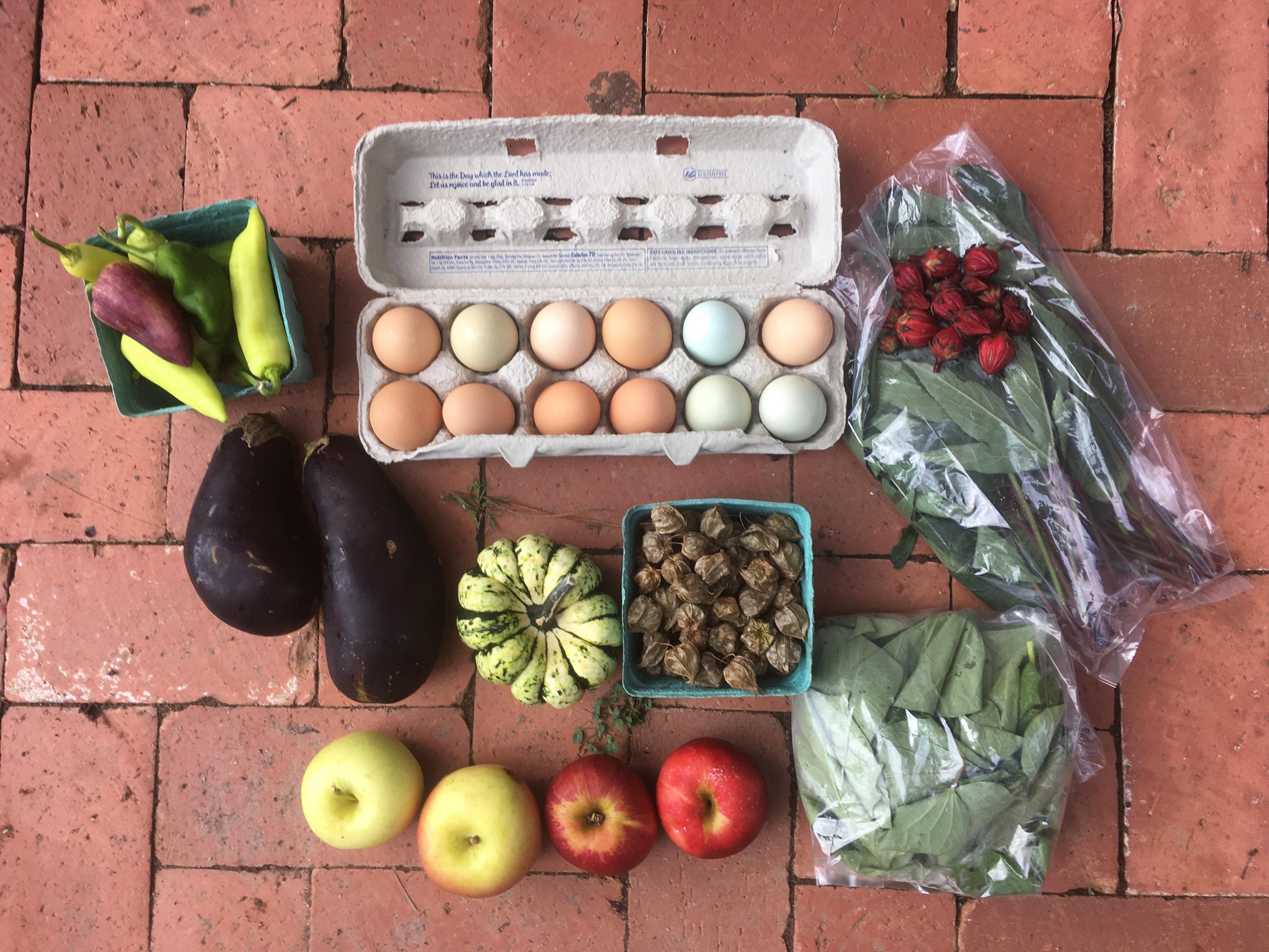 Vegetable Share - Full
