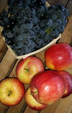 2019年夏季常规季节水果共享附加-两个水果