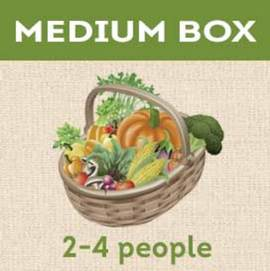 Medium Share