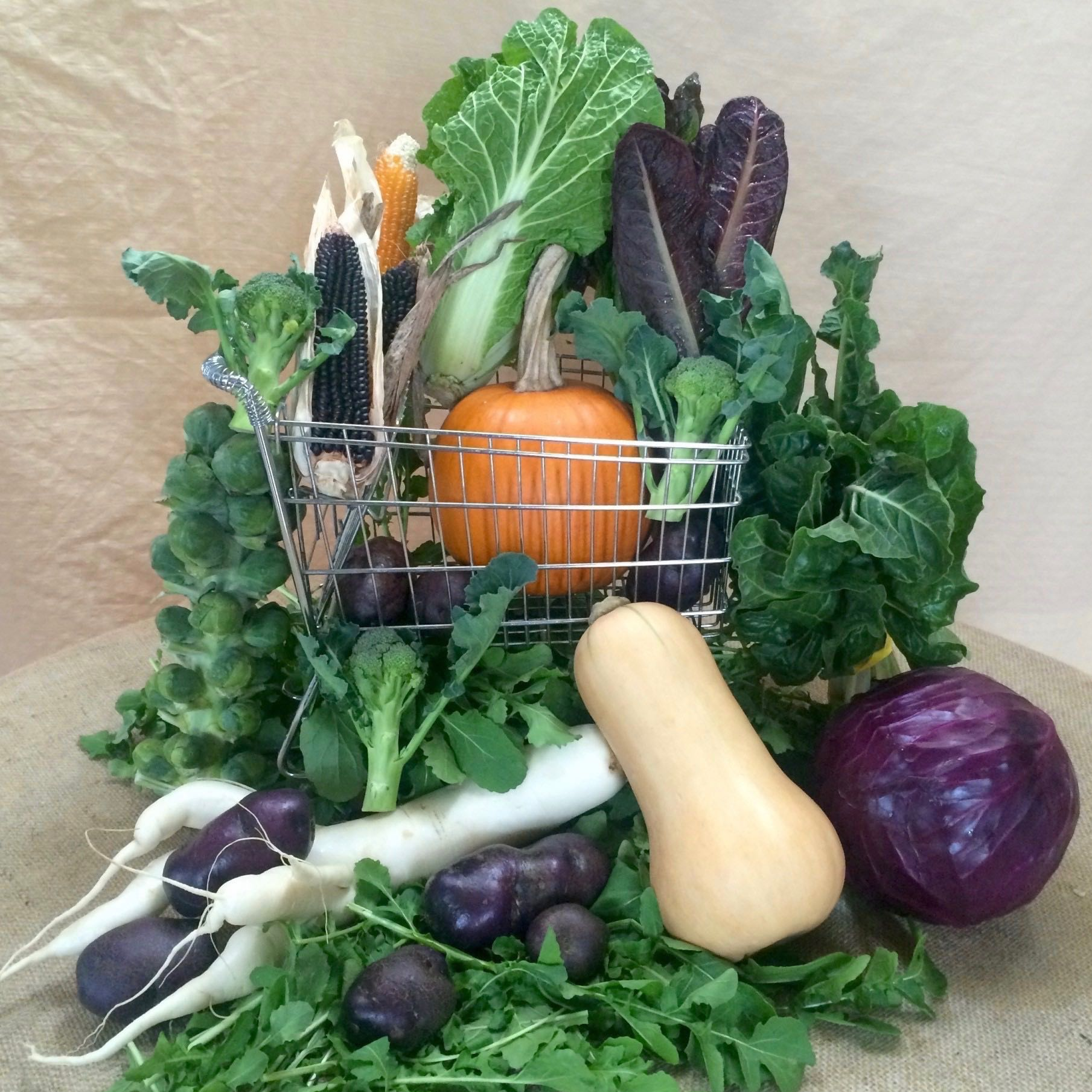 2020 Weekly Extended Season Vegetable Share