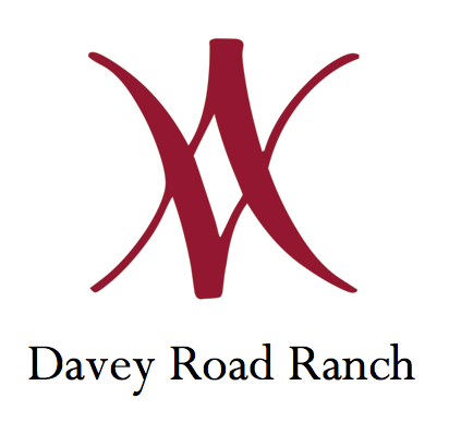Winter Cow Cheese Share from Davey Road Ranch