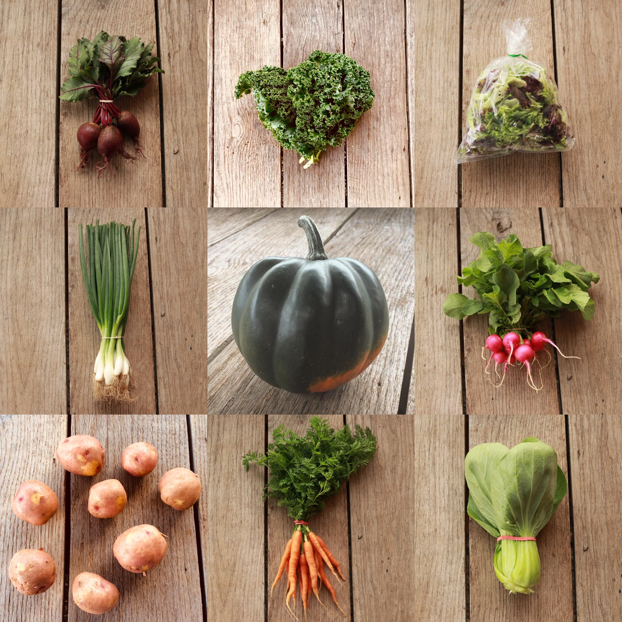 Autumn Vegetable Share