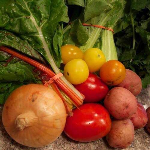 Solo Vegetable Share