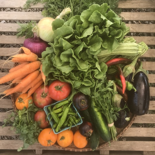 Produce Share - Full