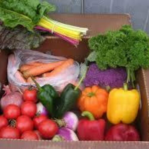 Vegetable CSA - 2/3 Bushel Box