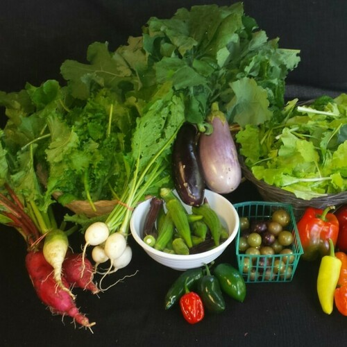 Fall Vegetable Share