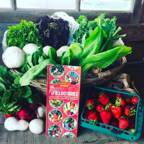 Double Farm Veggie Box