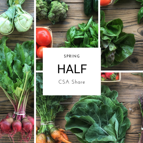Spring Vegetable Share - Half Size