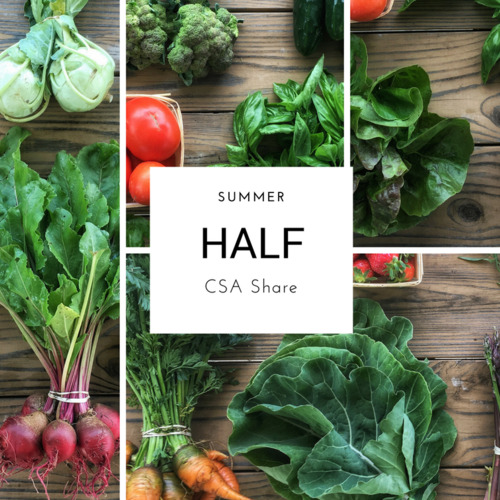 Summer Vegetable Share - Half Size