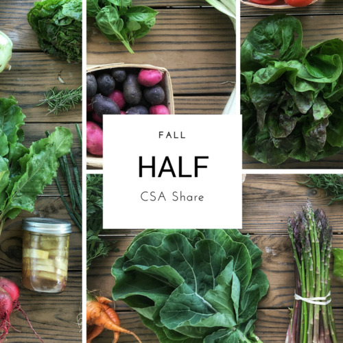 Fall Vegetable Share - Half Size