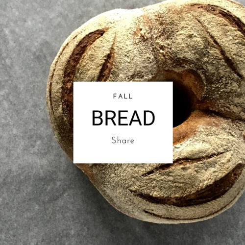 Fall Bread Share